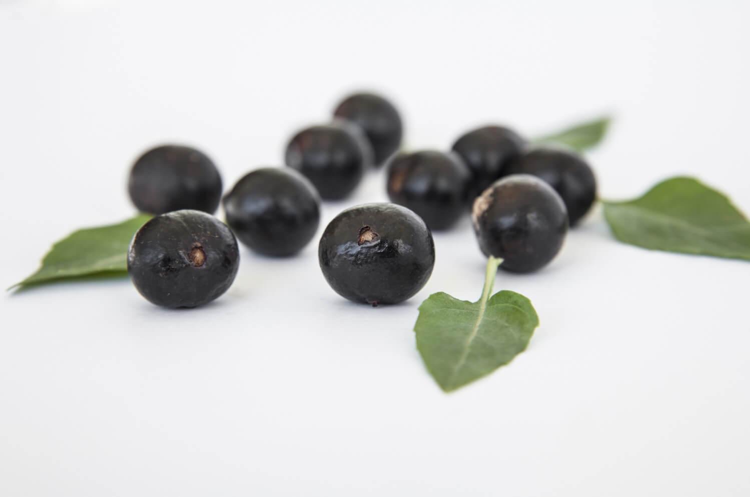 acai berry 4