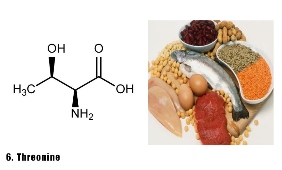 axit-amin-5