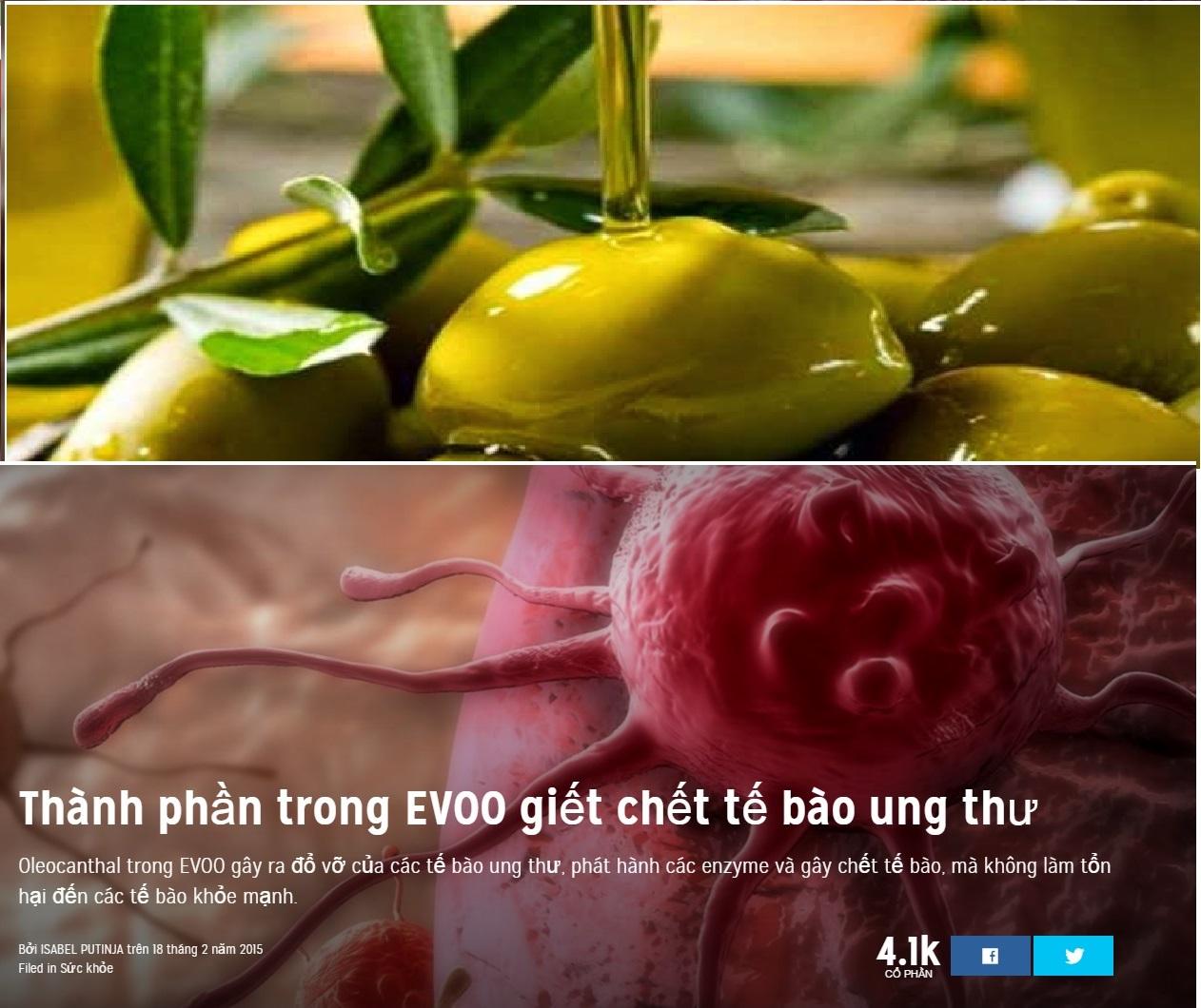 dầu olive và tế bào ung thư